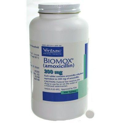 Cheap Amoxil 500 mg Online Pharmacy