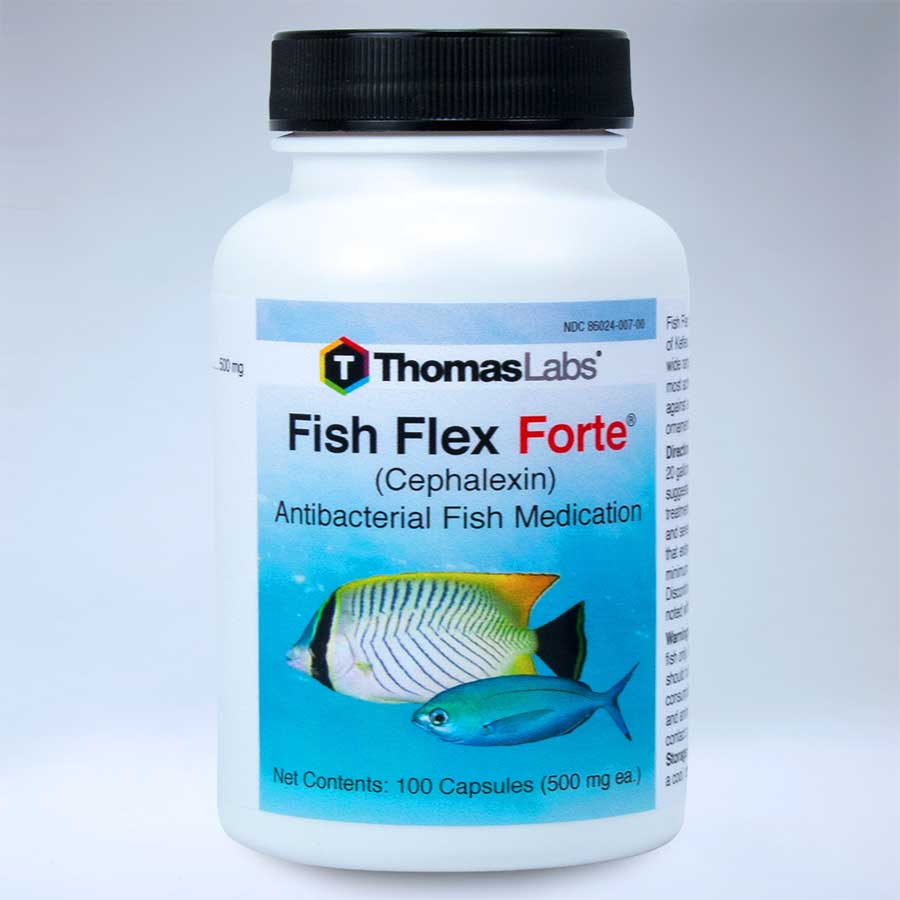Fish flex forte cephalexin 500mg 100 ct for Fish flex for dogs