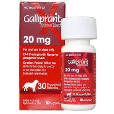 Galliprant California Pet Pharmacy